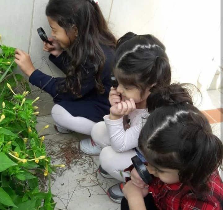 Anaokulu Fen ve Doğa Etkinliği